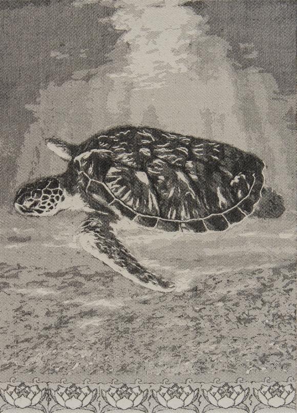 Mary Burns - Turtle-4812 copy